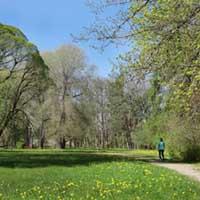Parks ir diezgan plašs, veidots kā ainavu parks 19.gs.b.